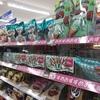 【企画力】チョコミントに学ぶ季節戦略