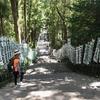 熊野古道・もっとも整備されて歩きやすい、「中辺路、発心門王子〜熊野本宮大社」