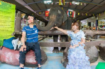 【タイ旅行記#7】芋洗い状態の水上マーケットが楽しい、象にキスされる体験をしてきました!
