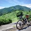 岐阜から滋賀へ02:揖斐川町の天空の茶畑