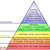 """Maslow's Theory"" Unit3 Portfolio Activity, BUS 5113: Organizational Theory and Behavior (University of the People)"
