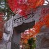 京都・亀岡 - 苗秀寺の紅葉