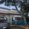 【ハワイホノルル】朝ごはんにもランチにもおすすめ、Bogart's cafe