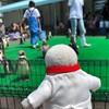 浜辺の水族館でペンギン観察!福井サイコー(福井の旅その1)(023)