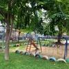 チャルムラー公園2