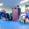 ねわワ宇都宮 11月21日&23日の柔術練習