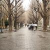 地方大学離れと東京の過密化──地方大学振興法がもたらすもの