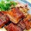 鰻がふっくら美味しかった!【丸亀製麺】牛とうなぎのぶっかけうどん販売は7月24日まで!