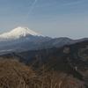 今月の峠走 - 大野山
