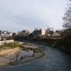 仙台 桜 満開