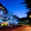 東京ミッドタウンのSUMMER LIGHT GARDENを… 横目にポケモンGOしてきた