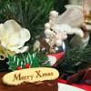 ●メリークリスマス2011