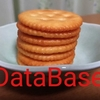 庶民にとってデータベースとはどのような存在なのか
