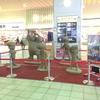 2016鳥取旅行記-コナン空港!一人旅♪③ - 砂丘編