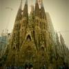 Sagrada Familia is growing up...