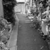 ぶらり独りウォーキング大田区 旧東海道 その2