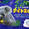 東山動植物園のナイトZOOに行ってきました