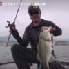 【川口直人】DAIWAネコストレート5.8を紹介!琵琶湖で圧巻のビッグバス連発劇をご覧ください!