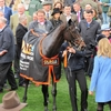17/03/14 National Hunt Racing - Cheltenham Festival - OLBG Mares' Hurdle (G1)