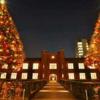 キャンパスツアー「樹齢100年の大木に輝くクリスマスイルミネーション」