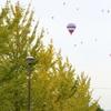 秋の色と熱気球