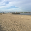 裸足で砂浜を単に歩いてみる・・・【アーシングなる健康法】