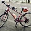 私がロードバイクを始めたきっかけ【初ライドはまさかの100キロ越え】