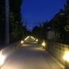 沖縄に行ってきた【渡名喜島】(その1)