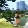 浜離宮、高層ビル群、そしてドードー【ポケモンGO】10月のコンテスト応募写真・その2