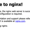 NGINX Ingress Controllerを試す