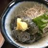 【GW・夏休みに行列してでも食べたいお店】江の島も一望できる鎌倉腰越「しらすや」でしらす料理と地魚三昧