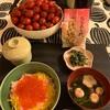 コストコ購入品〜いくら丼〜桃の節句〜今日のわんこ