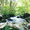 青森秋田旅行3泊4日Part3 奥入瀬渓流と十和田湖ドライブと奥入瀬渓流ホテルのラウンジ