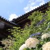 【観音寺】_広島県広島市 - photos