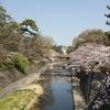 夙川の桜 2018.03.31