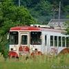 日本 樽見鉄道について