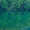 長野県茅野市のため池!木々を映す鏡面と青色が美しい御射鹿池
