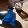 BIRDS BY TOIKKA  annual 1999  BLUE JAY