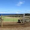 ハワイ島(7)閉ざされた最古の宮殿