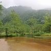 モンベルの超軽量雨具バーサライトパンツをはいて雨の上高地を歩いてみた