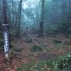 霧島温泉「目の湯」&「川の湯」