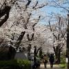 春は体調を崩しやすい季節②