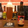Mikkeller Mikkel′s Dream