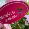 追い込んだなぁ〜🤨2020年5月10日(日曜日)