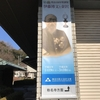 2019年1月19日(土)/鎌倉国宝館/FEI ART MUSEUM YOKOHAMA/横浜美術館/他