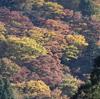 冬が来るまえに…滋賀県御殿山