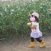 トトロの「とうもころし」が体験できる、「いただきますカンパニー とうきびピクニック」《自然と食育、子供のための北海道旅行4日間!》