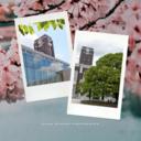 京都大学合格への道