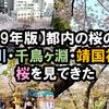 【2019年版】都内の桜の名所 目黒川・千鳥ヶ淵・靖国神社で桜を見てきた