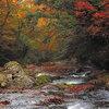 熊本の自然(2)~広大な自然と歴史を歩く~